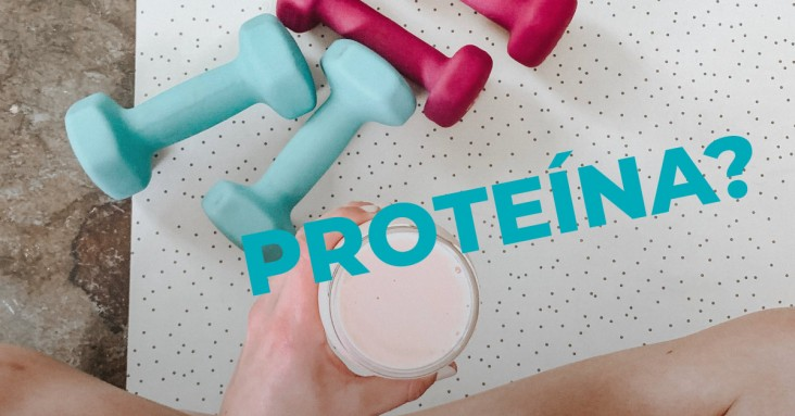 Proteína? sim ou não?