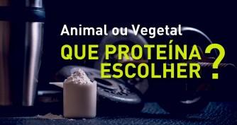 Animal ou Vegetal? Que proteína escolher?